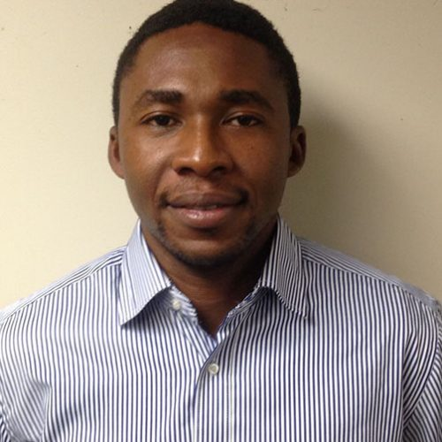 Wale Ogunleye